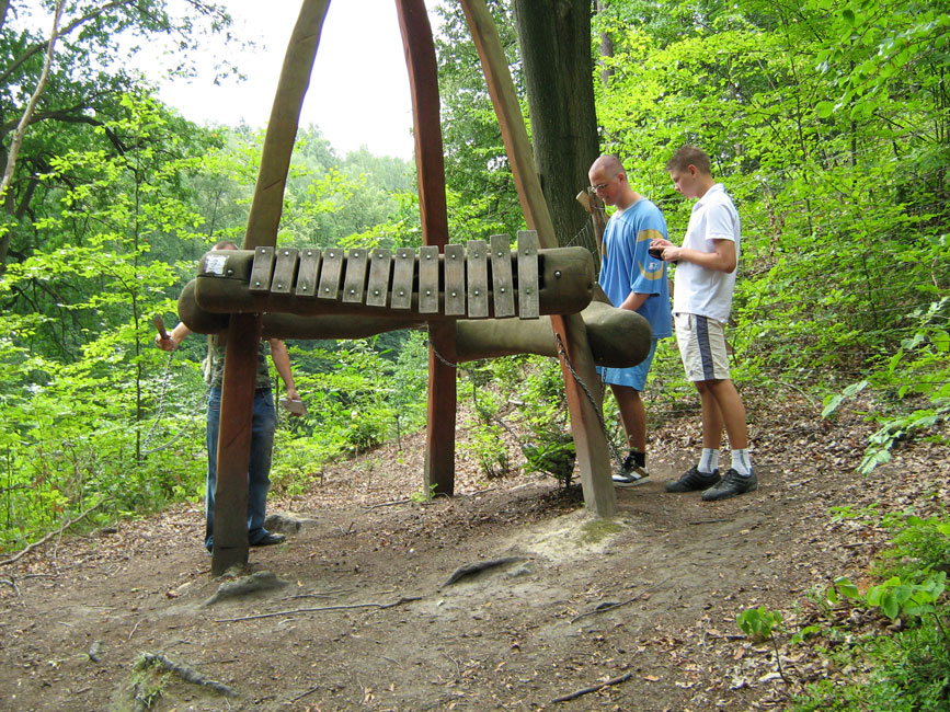 forest adventure trail & natural reserve station 4